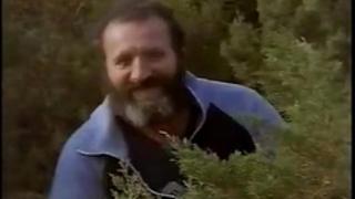 Kostas samaras, pavlos karanikolas, alexis metaxas in classic sex scene