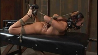 "Satine phoenix - consummate thrall ""hogtied and fucked"" 02/25/2007"