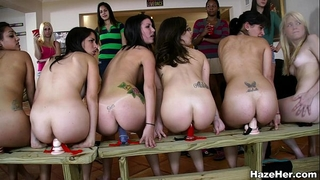 A row of dildos for the newbies