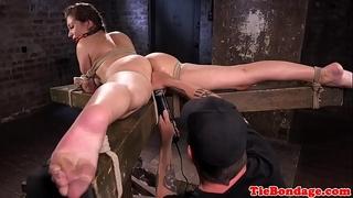 Busty sadomasochism sub bound up and vagina fingered